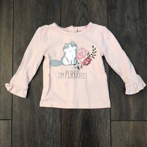 Little Lass Matching Sets - Toddler Cat tee/pant/vest outfit